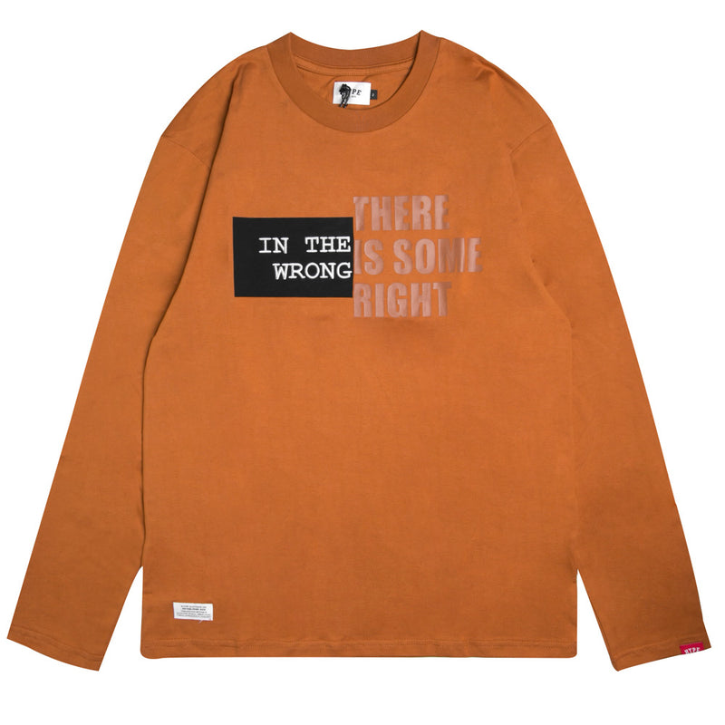 Capsule Lanyon Oversized Long Sleeve Tee | Brown