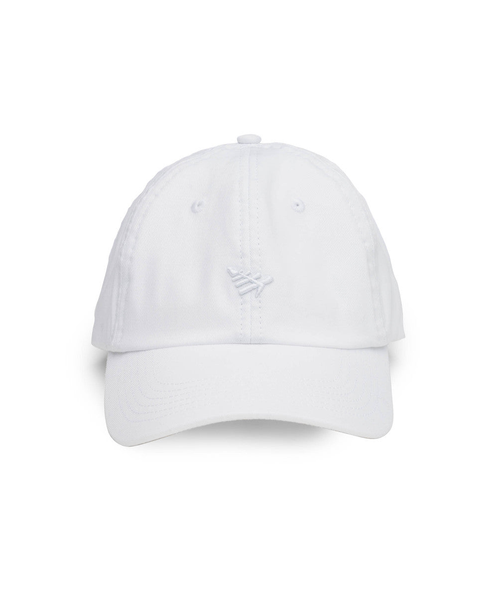 Plane Icon Dad Hat