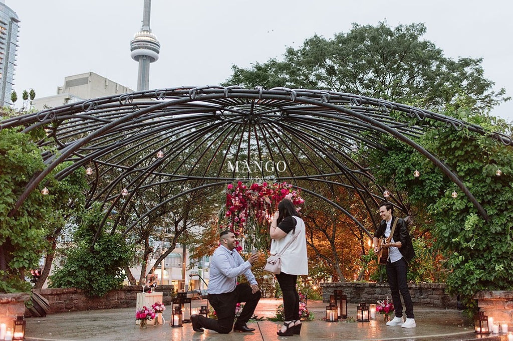 Romantic Surprise Proposal in the Toronto Music Gardens