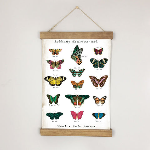 Museum Chart - Butterfly No. 1