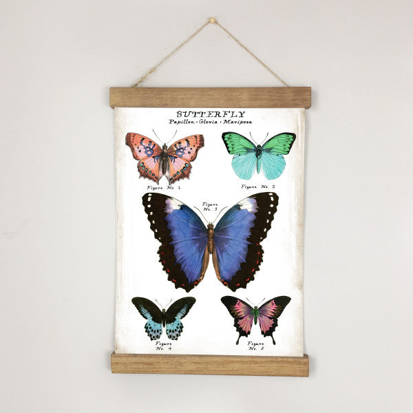 Museum Chart - Butterfly No. 2