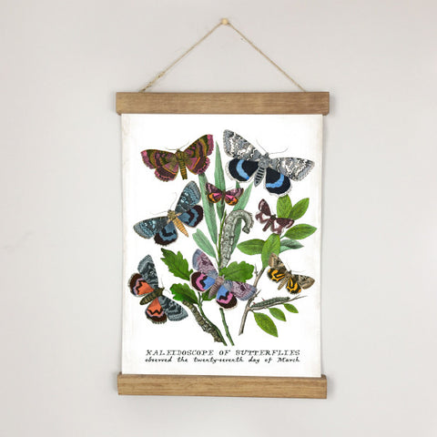 Museum Chart - Butterfly No. 3