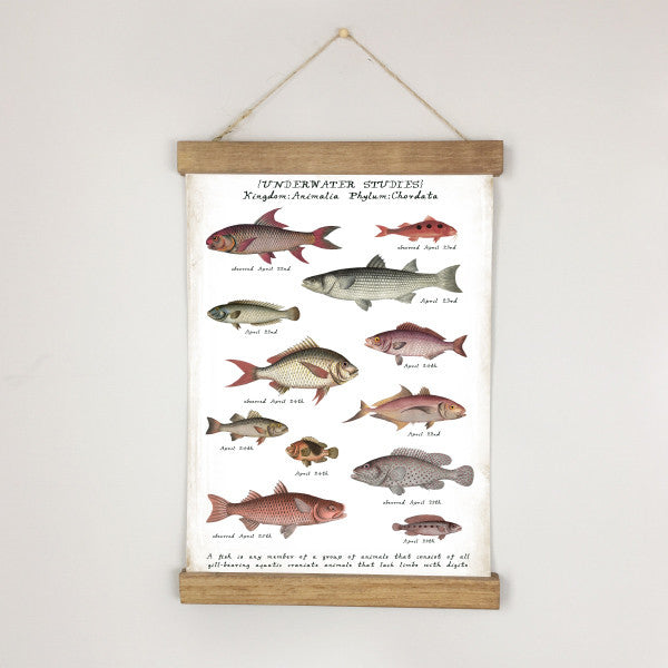 Museum Chart - Blush Sea: Fish