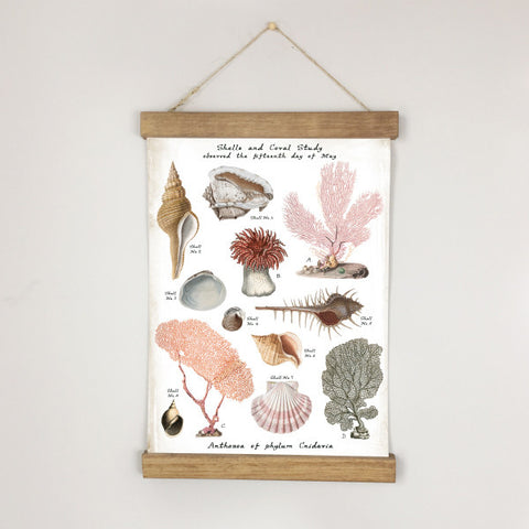 Museum Chart - Blush Sea: Coral