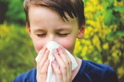 Hay fever 101 – What is it and how can natural remedies help?
