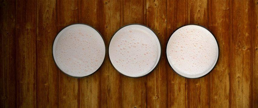 Protein Powder, not just for Bodybuilders!
