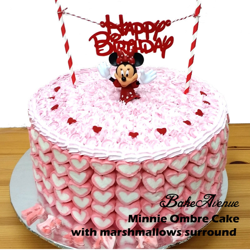 Mickey Minnie Ombre Cake with marshmallows