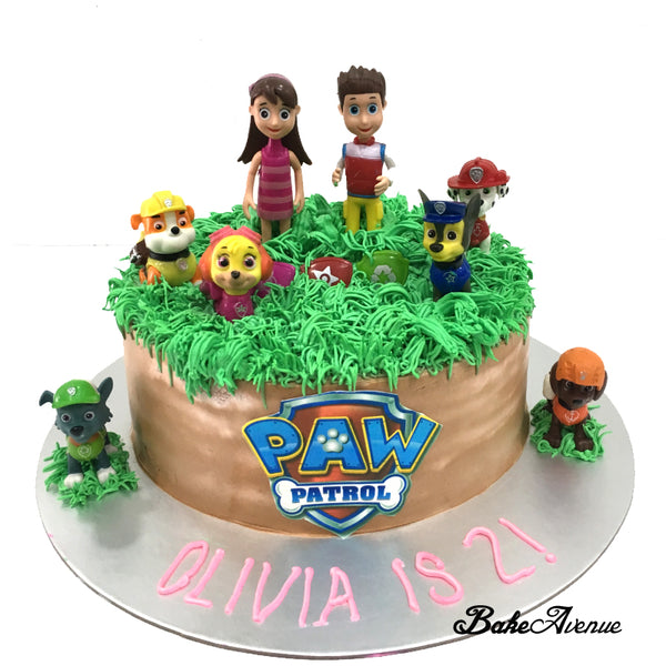 Paw Patrol Topper Ombre Cake