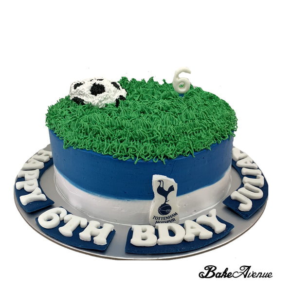 Sports Soccer Theme Cake with a soccer ball (Tottenham Hotspur Football)