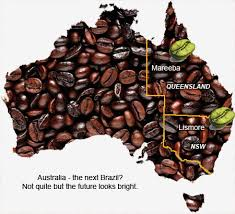 Why is Australian Coffee So Good?