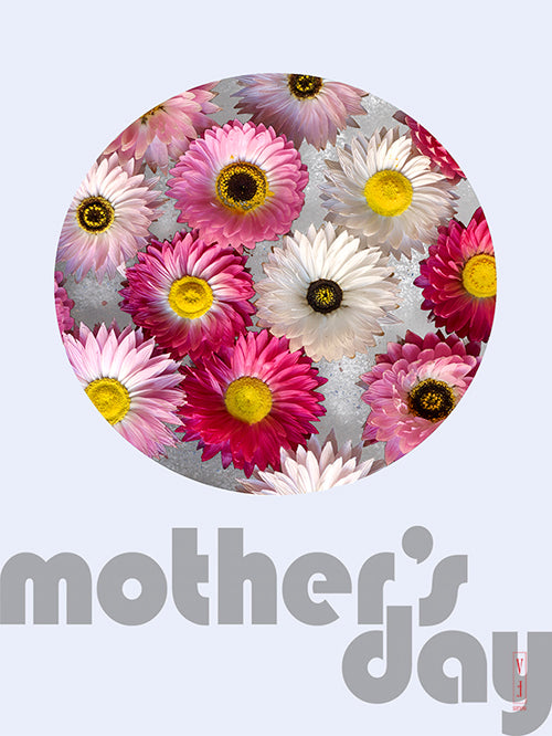 Paper Daisies_Mother's Day
