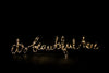 10 Metre ACDC Powered Copper Fairy Lights with Remote Controller