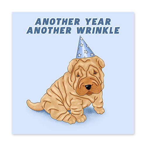 Central 23 - Funny Birthday Card for Dad - Dog Joke Birthday Cards for Mum - 'Another Year Another Wrinkle' - Rude Cards 50th 60th 70th - Comes with Fun Stickers