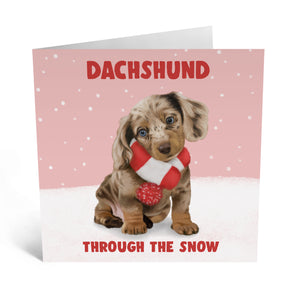 Dachshund Through The Snow (Pack Of 5)