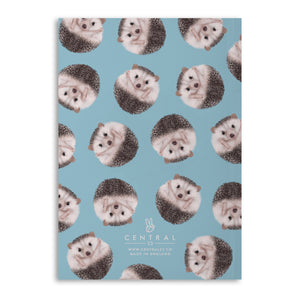 Hedgehog 'Sharp Ideas' A5 Lined Notebook