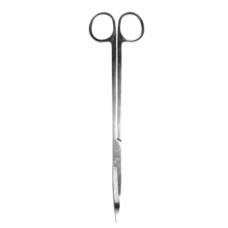 Our high quality stainless steel scissors are the perfect tool for keeping everything neat and tidy in your terraraium arrangement.  Keep your plants trimmed and healthy, they're worth adding to any terrarium purchase.