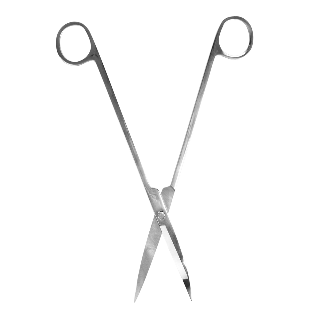 Terrarium scissors for plant care