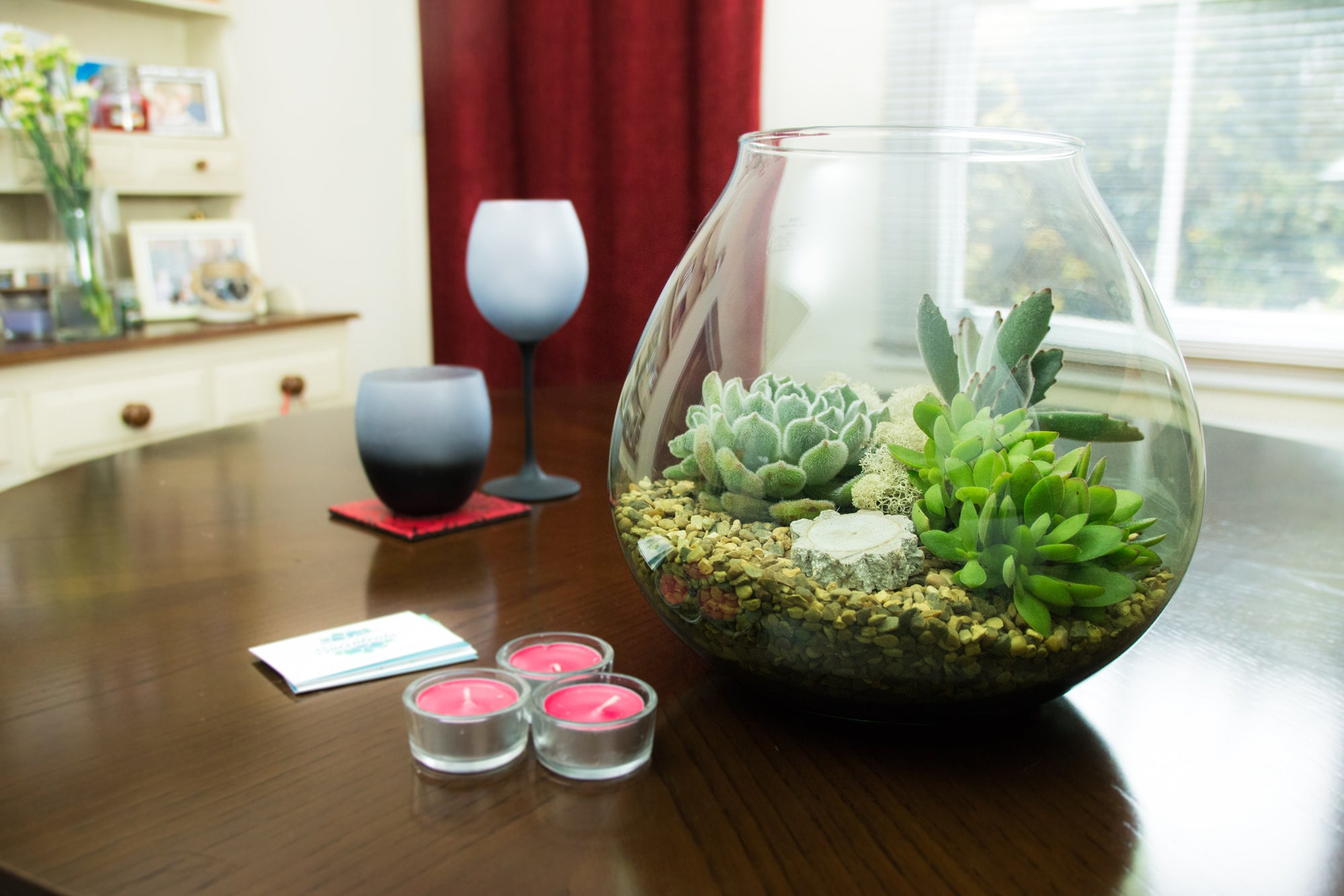Shades Of Green Glass Succulent Terrarium Indoor Plants For The