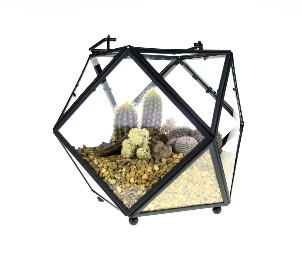 Geometric Glass and Copper Terrarium