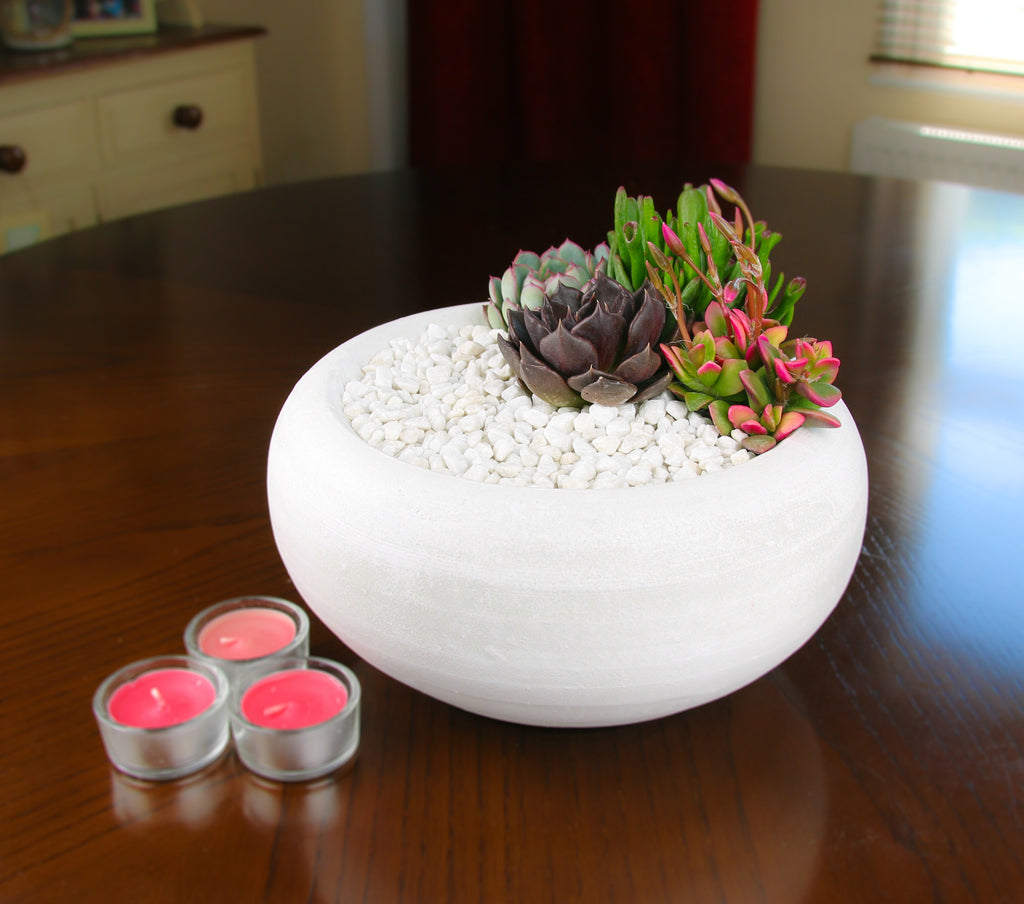 White Indoor Planter