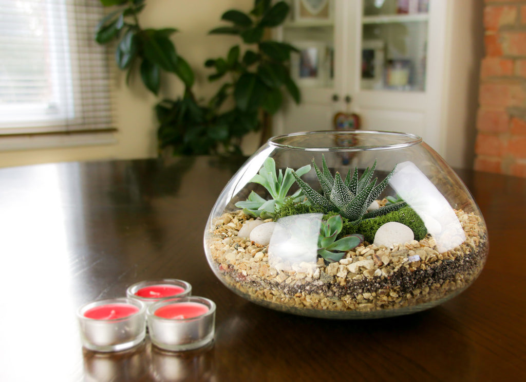 Home Accessory gift with plants