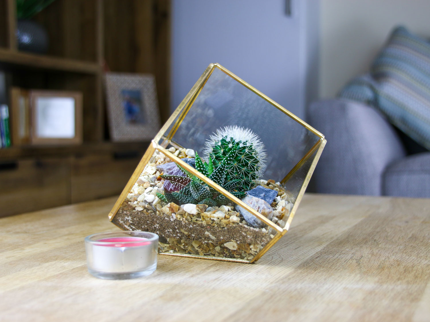 Gold Brass Cube Geo Terrarium With Cactus And Succulent Mix Plant Gift Ideas The Art Of Succulents