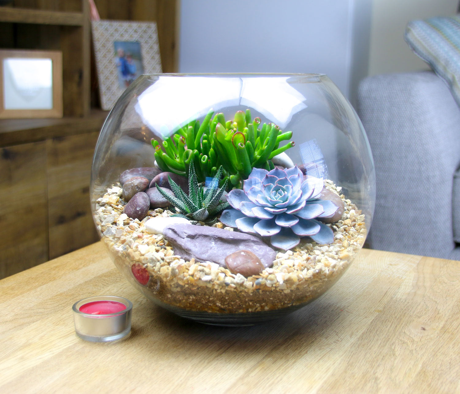 Large Glass Globe Succulent Terrarium To Buy In The Uk Basketball Sized The Art Of Succulents