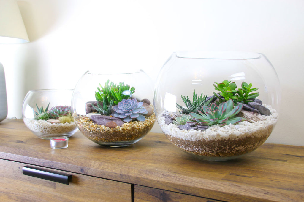 Home decor ideas with terrariums