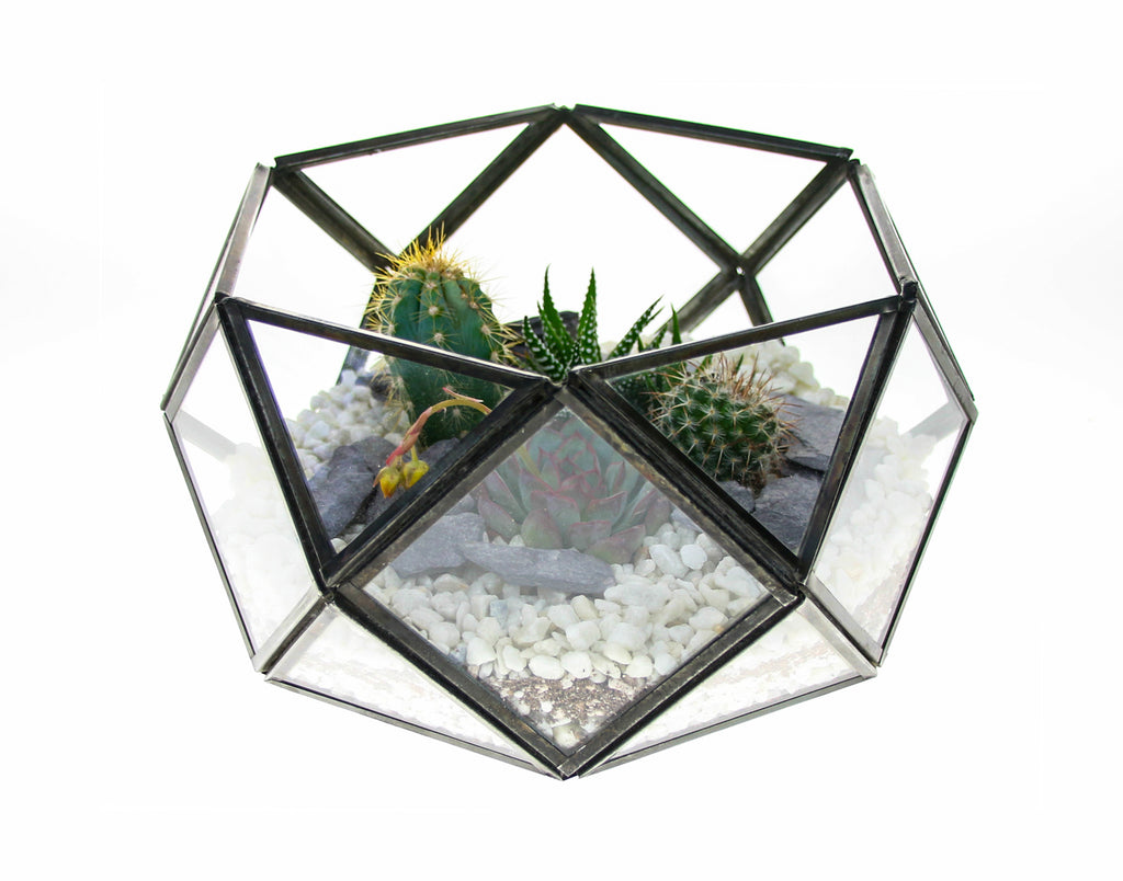 Antique hexagon terrarium