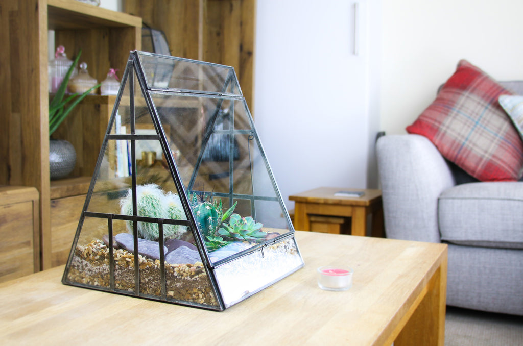 Terrarium with cacti and succulents