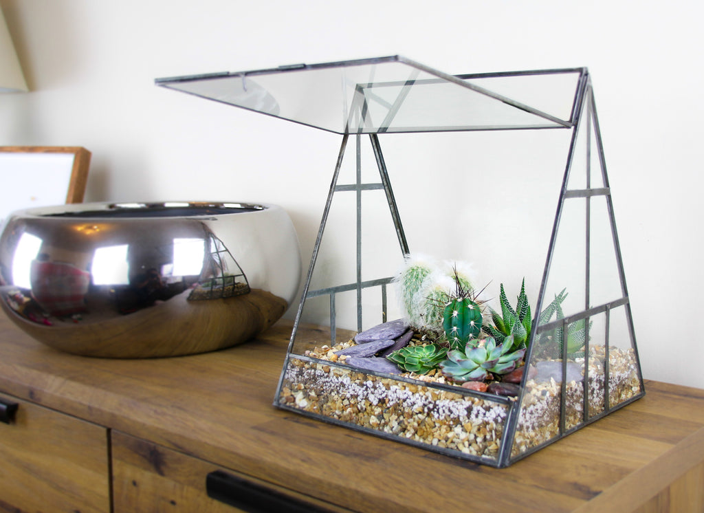 Pyramid greenhouse terrarium