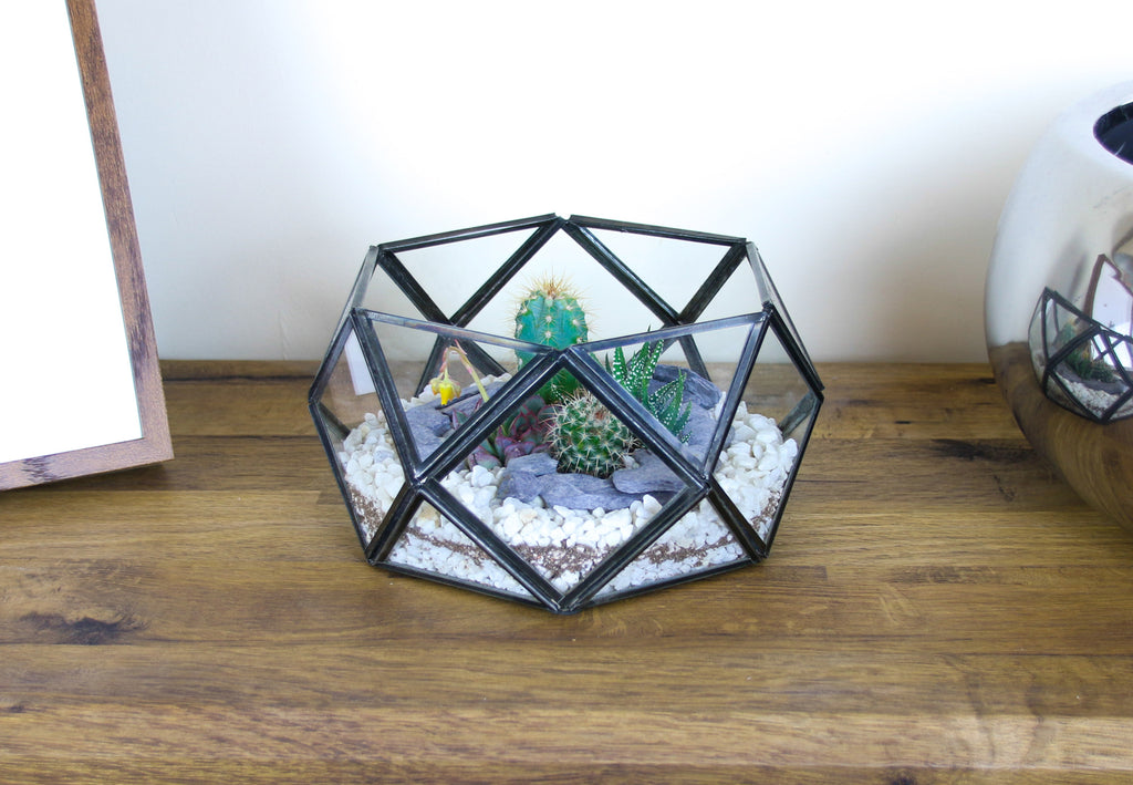 Handmade antique terrarium