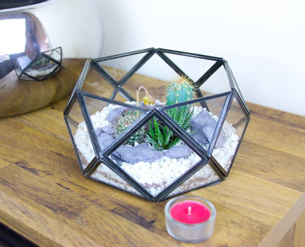 Home decor terrarium