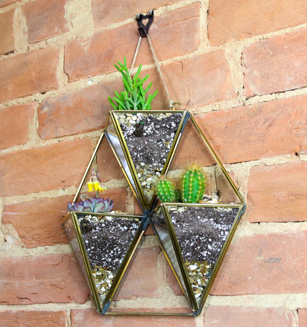 Wall hanging planter with succulents