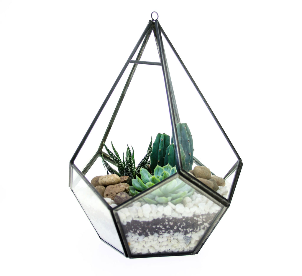 diamond glass and metal terrarium