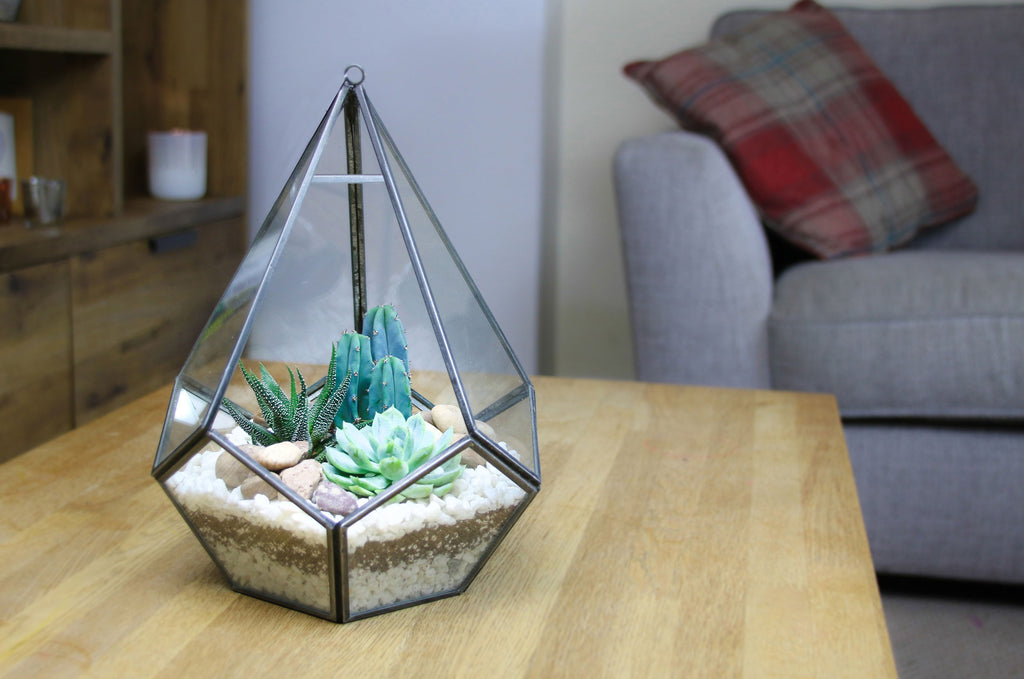 designer terrariums, home accessories