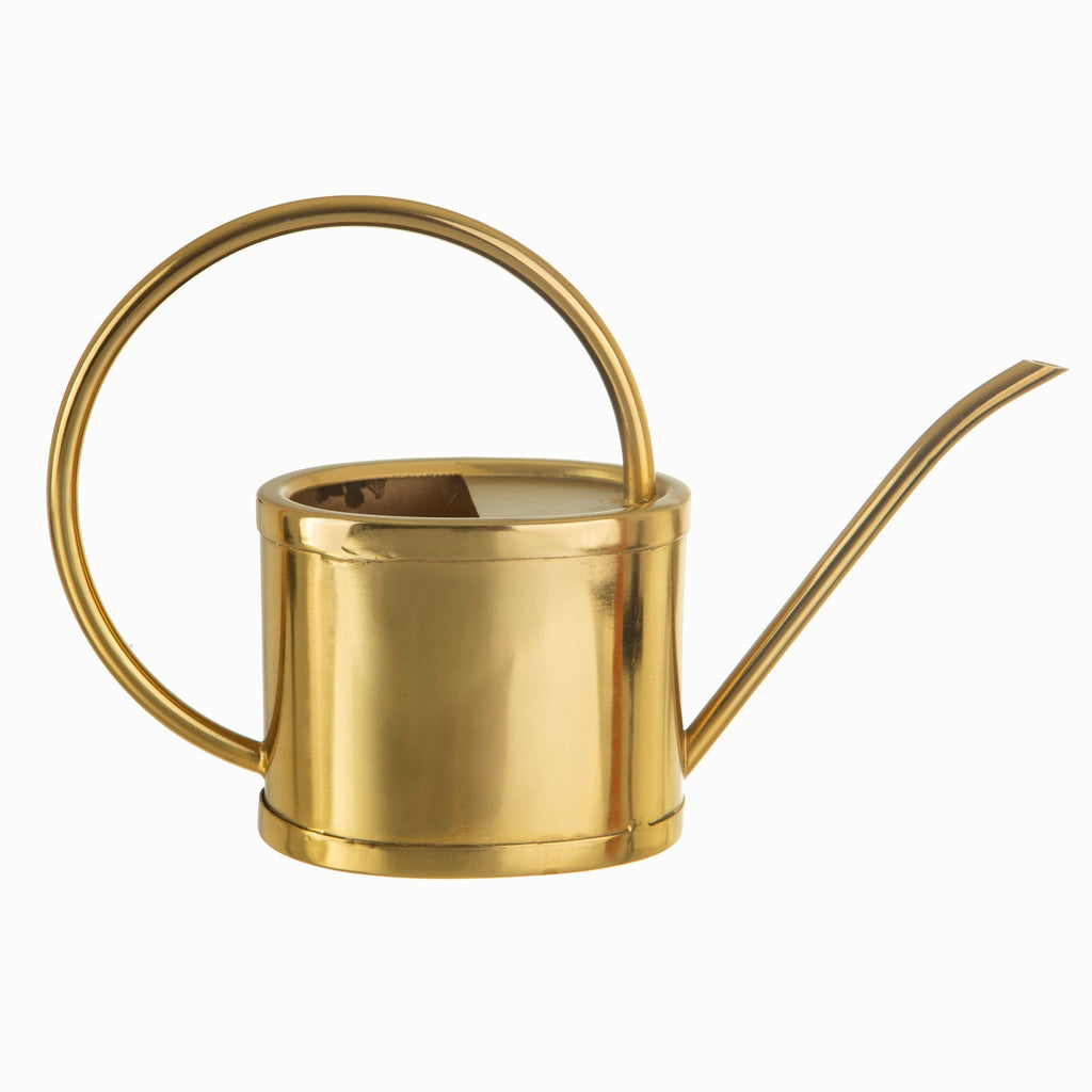 Brass Iron Watering Can for House Plants, cacti and succulents