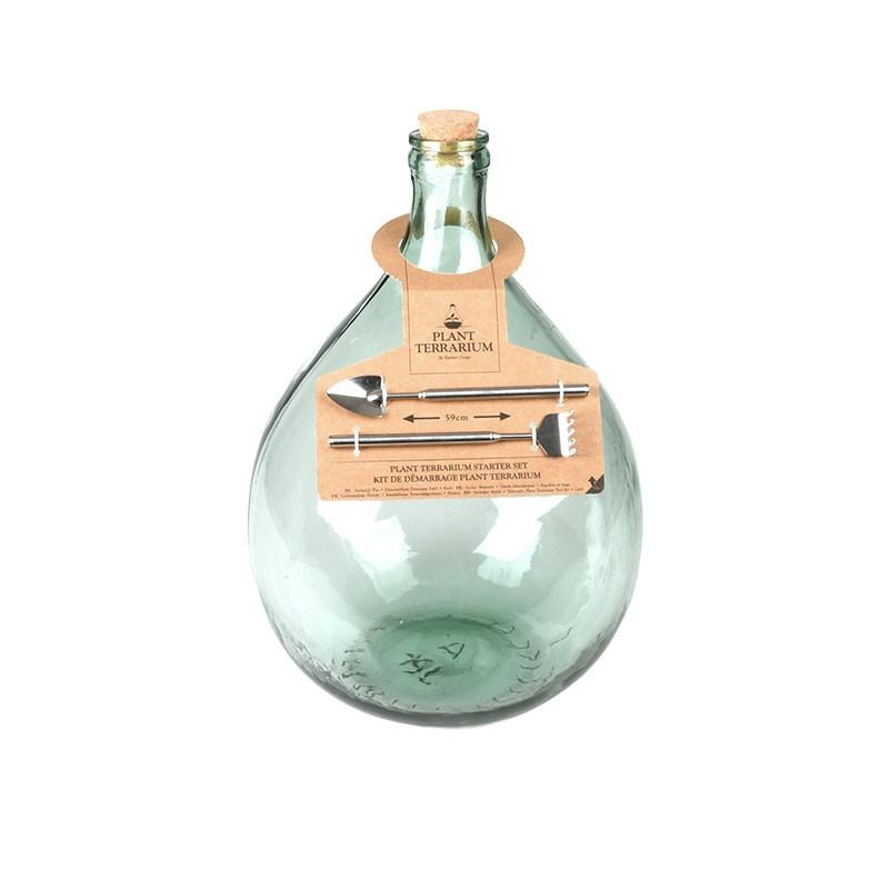 medium sized colosed bottle terrarium with cork bottle stop
