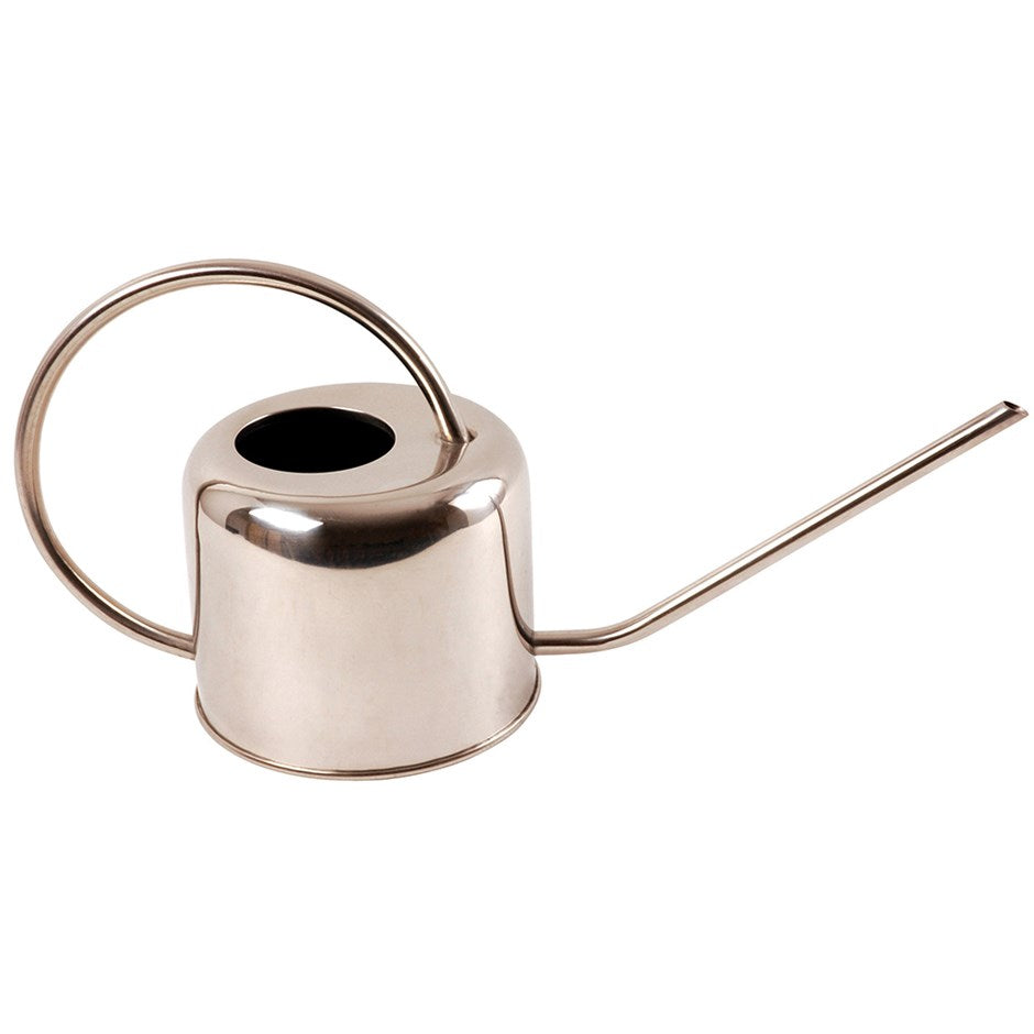 Stainless Steel Watering Can for House Plants and Terrariums