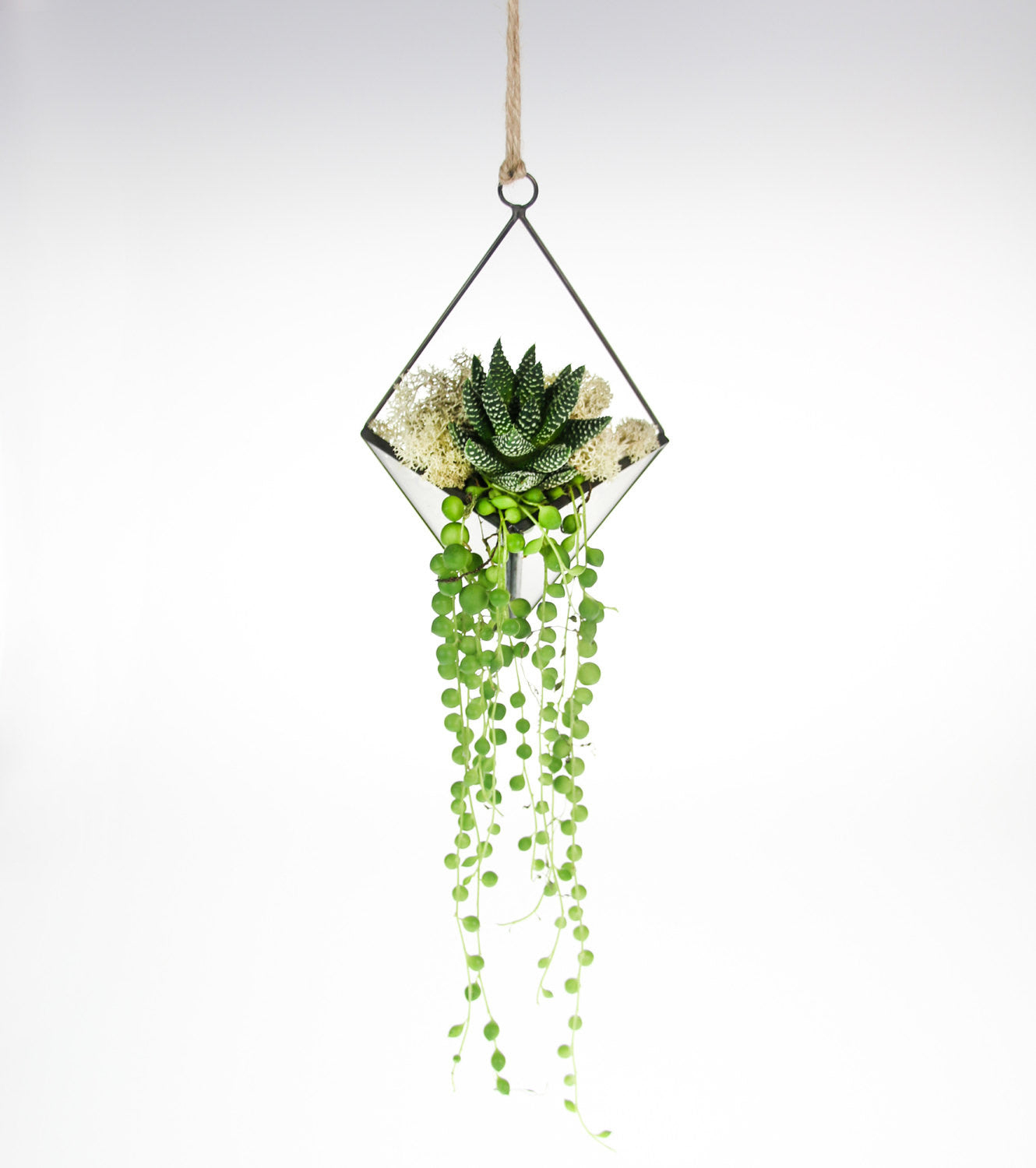Wall Hanging Geometric Terrarium Kit In Copper And Glass With String Of Pearls Succulent The Art Of Succulents