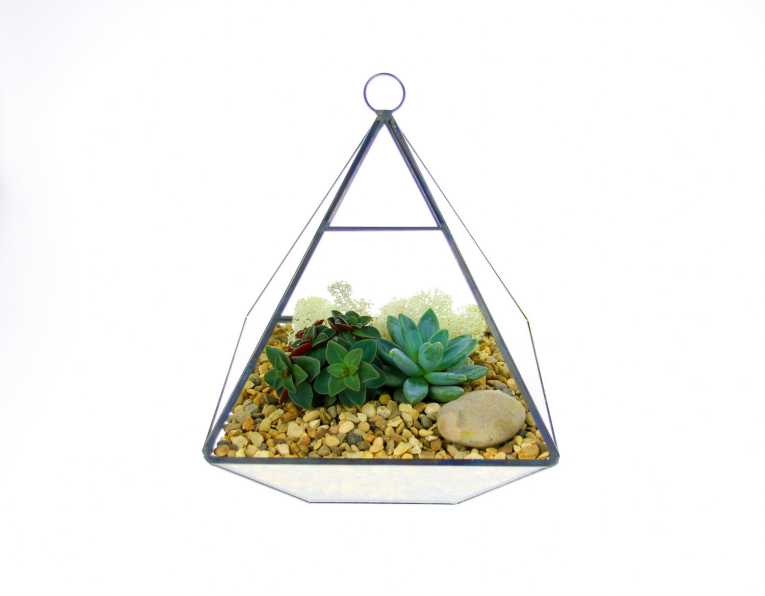 Contemporary Geometric Pyramid Terrarium Kit In Copper And Glass The Art Of Succulents