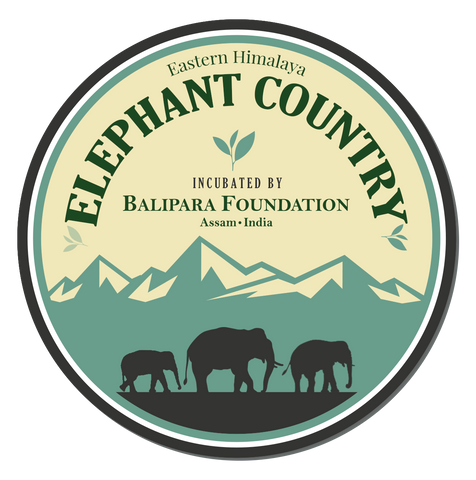 Designed to synergise Asian Elephant conservation and community development, Elephant Country products are symbolic of the inter-dependent relationship between men and elephants. Crafted by local artisans of Eastern Himalayas these products tell a story of coexistence and a unique bond of nurturing and being nurtured. The idea behind these products is to provide alternate sources of revenue generation and livelihood to many forest-fringe communities.  Elephant Country is incubated by Balipara Foundation, a Non- Profit organisation based in Assam in the Eastern Himalayas. Established in 2007, Balipara Foundation works towards community development and conservation of natural resources in the region through the concepts of Naturenomics™ and Rural Futures
