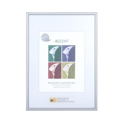 Nielsen Accent Silver Frames