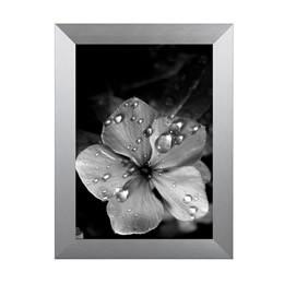 Photo Frames Metal| TRADEframes Wide Metal Brushed Silver - TRADEframes.co.uk