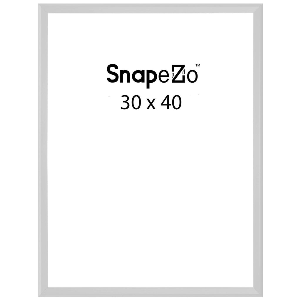 Silver Movie Poster Frame Poster Size 30x40 125 Inch Width