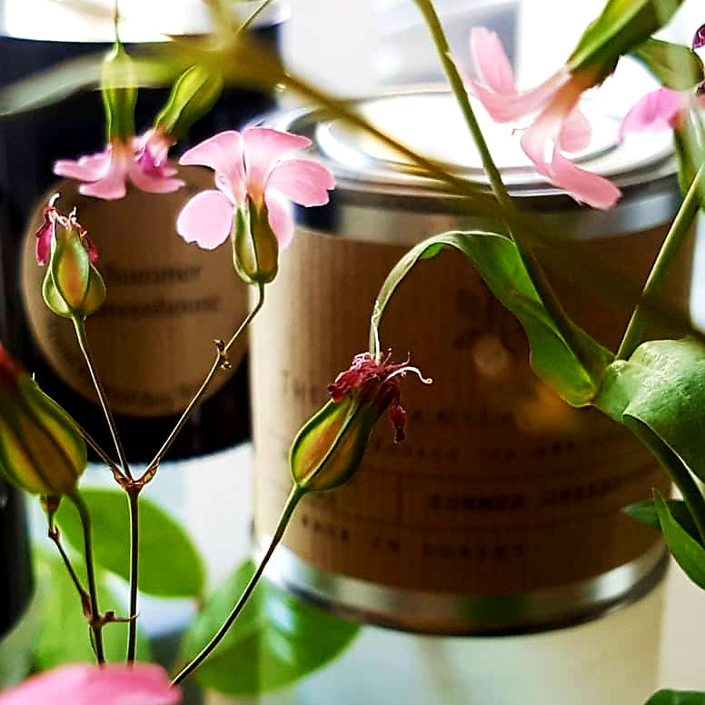 Botanical Candle Co.