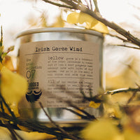 Bearded Candle Makers Candle ~ Irish Gorse Wind ~ coconut, ouzu, bluebells