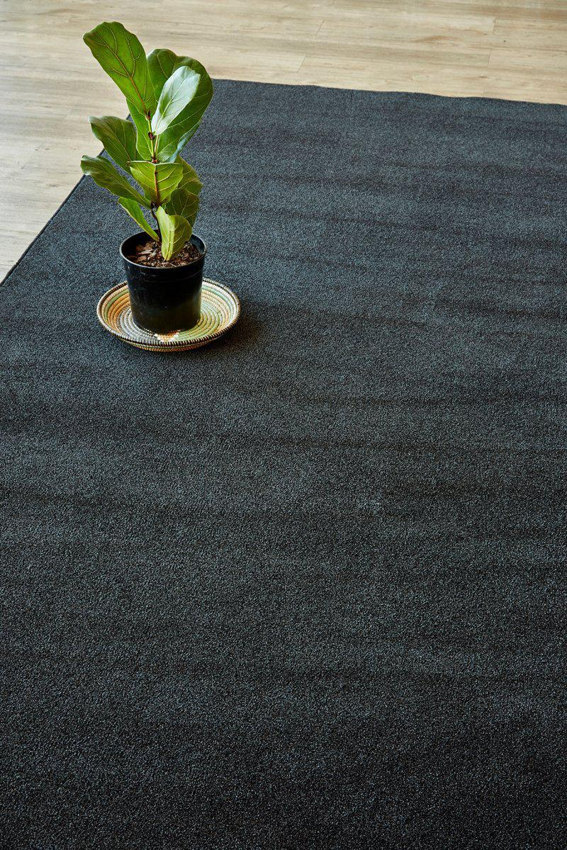 Plush Anthracite-rugs-Airloom