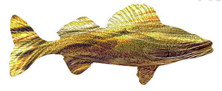 Ron Schrader Acrylic Walleye Large Yellow