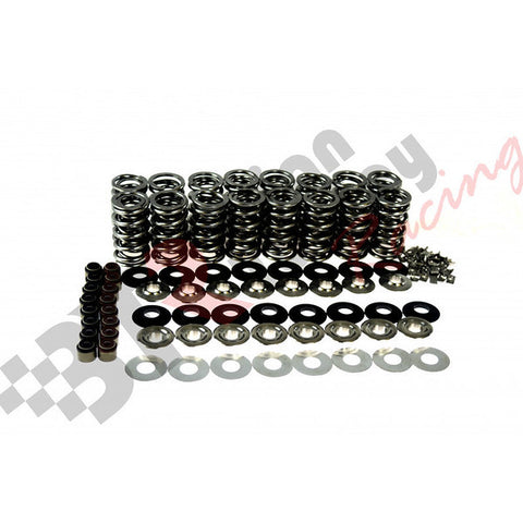 BTR 660 Platinum LT4 valve spring kit with Titanium retainers